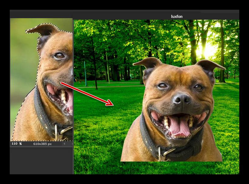 Копируем объект на новый слой в Pixlr