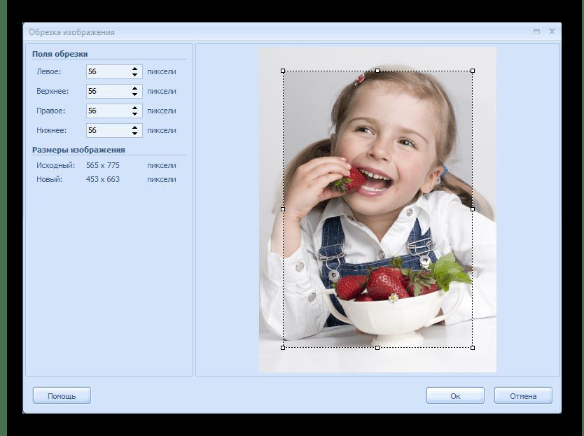 Обрезка изображения RonyaSoft Poster Printer