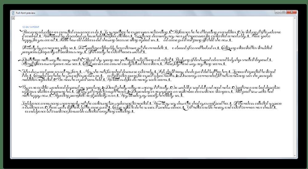 Окно просмотра символов шрифта на примере текста в Type