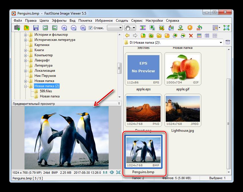 Переход к полноэкранному отображению изображения BMP в программе FastStone Image Viewer