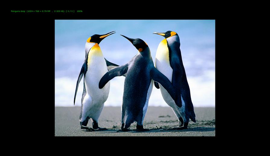 Полноэкранный просмотр изображения BMP в программе FastStone Image Viewer