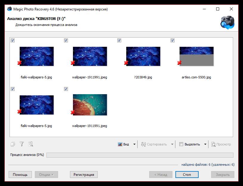 Предпросмотр найденных файлов в Magic Photo Recovery