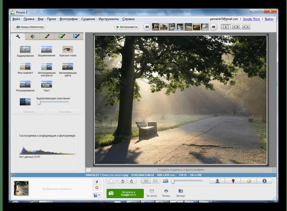 Просмотр изображения Picasa
