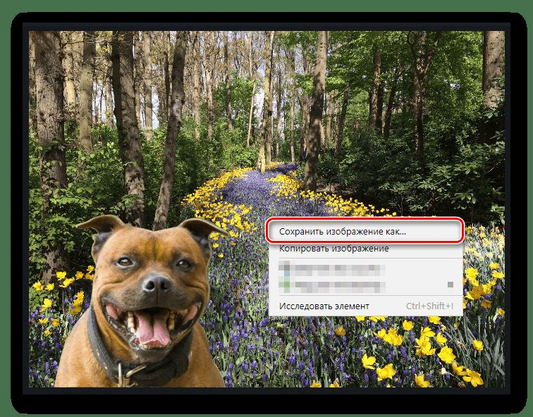 Скачиваем готовое изображение с piZap на компьютер