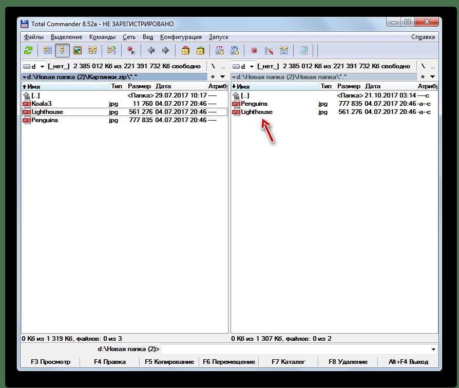 Содержимое архива ZIP распаковано в указанную папку в программе Total Commander