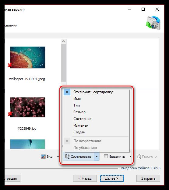 Сортировка найденных изображений в RS Photo Recovery