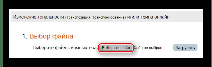 Кнопка для начала выбора файла с компьютера на сайт RuMinus