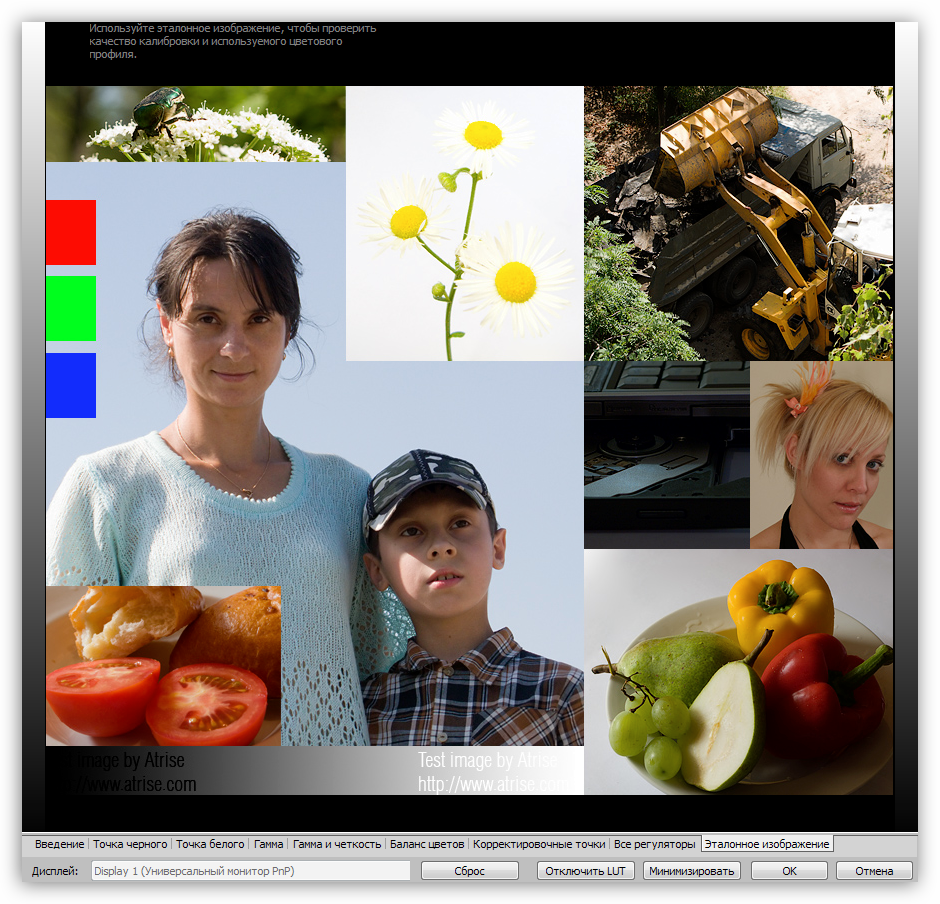 Эталонное изображение для проверки качества калибровки в программе Atrise Lutcurve