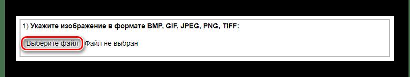 Форма для загрузки файла в IMGonline