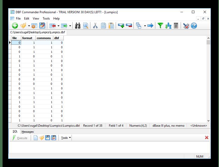 Пример открытой таблицы DBF Commander