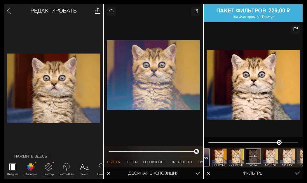 Скачать MOLDIV для iOS