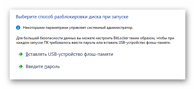Процесс выбора разновидности шифрования в окне активации BitLocker в ОС Виндовс