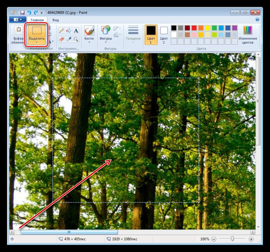 Определение области обрезки фотографии в программе Paint