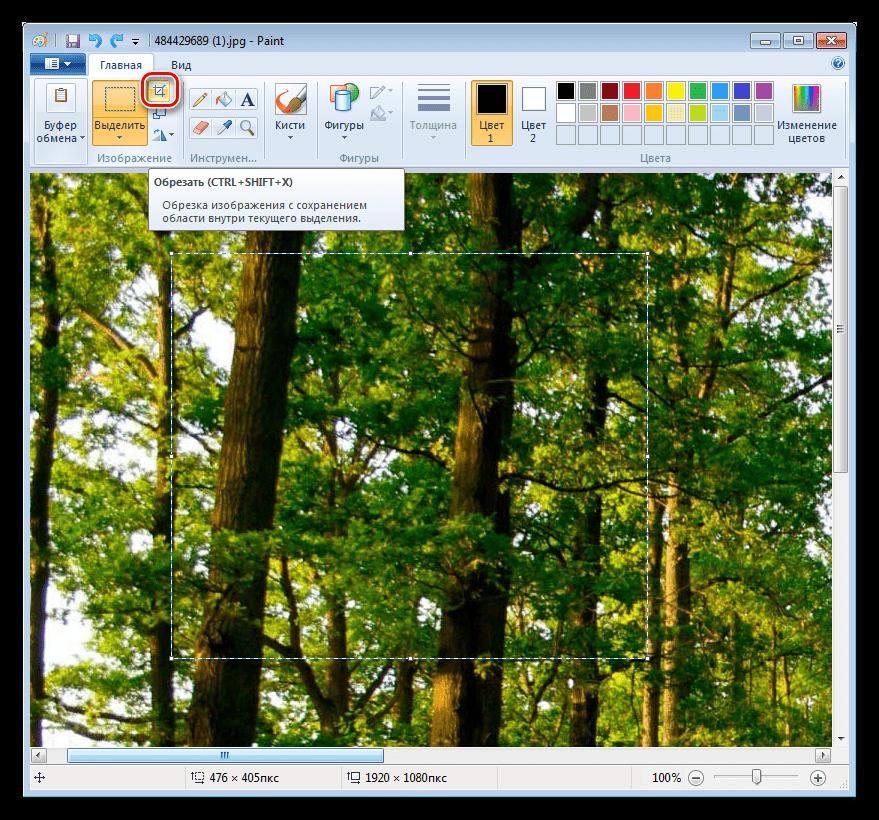 Выполнение обрезки фотографии по выделенной области в Paint