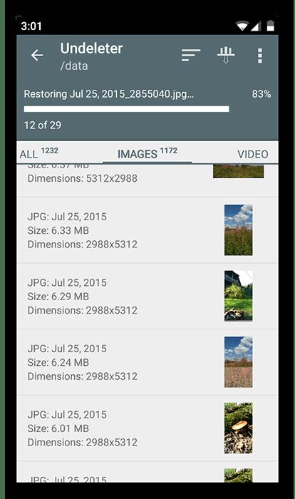 Список файлов в Undeleter