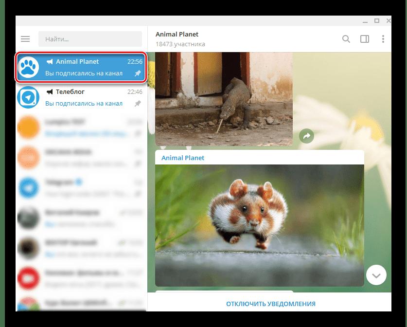 Telegram Desktop тематические каналы