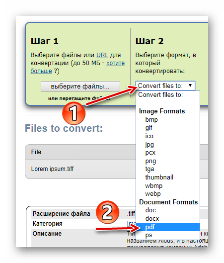Выбор целевого формата для конвертирования TIFF-файла в ZamZar