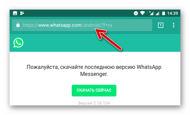 WhatsApp для Android Скачать APK последней версии с официального сайта
