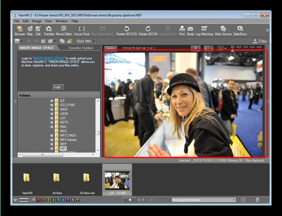 Открытый NEF-файла в программе ViewNX