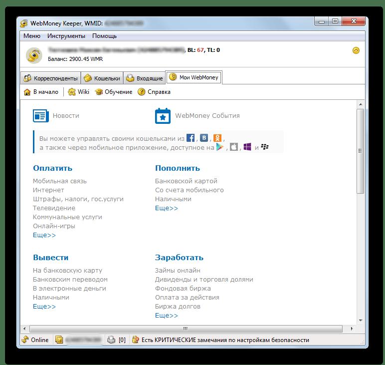 Информация о Вебмани в окне программы WebMoney Keeper
