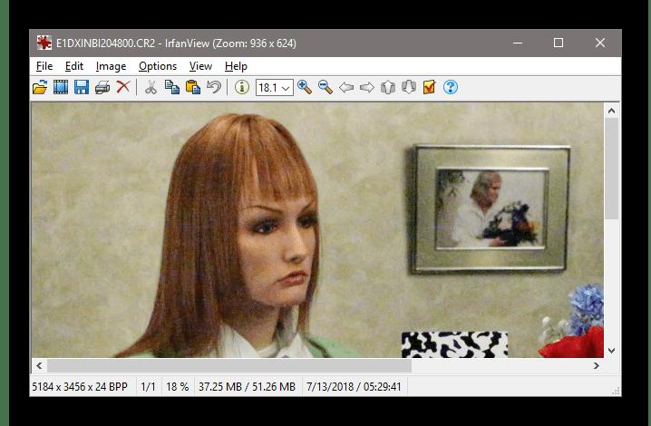 Просмотр СR2 файла, открытого при помощи программы InfranView
