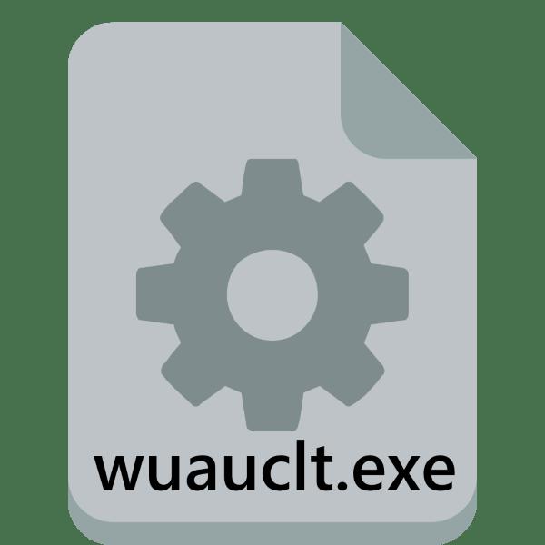 wuauclt.exe - что за процесс