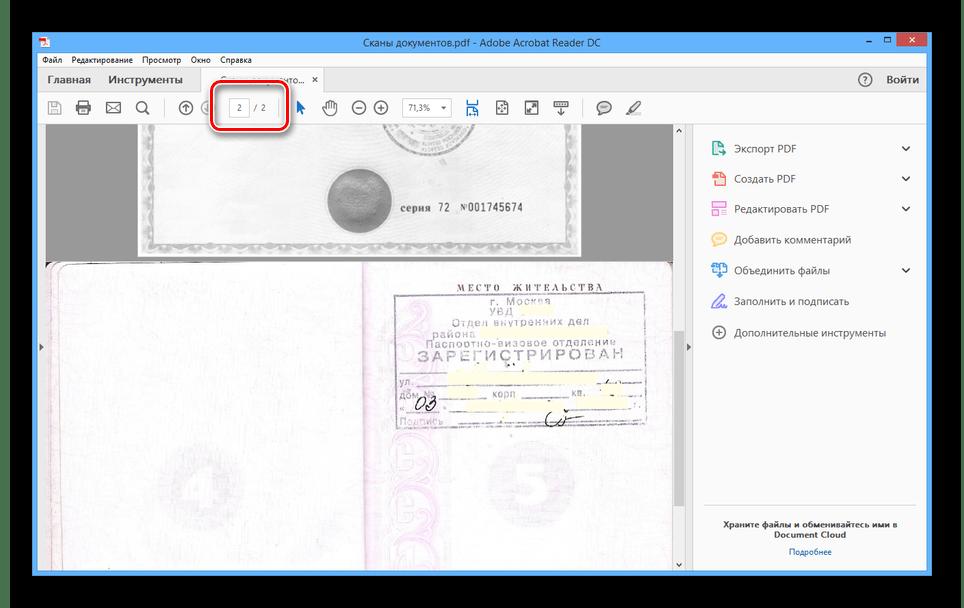 Успешно открытый PDF-файл со сканами из RiDoc