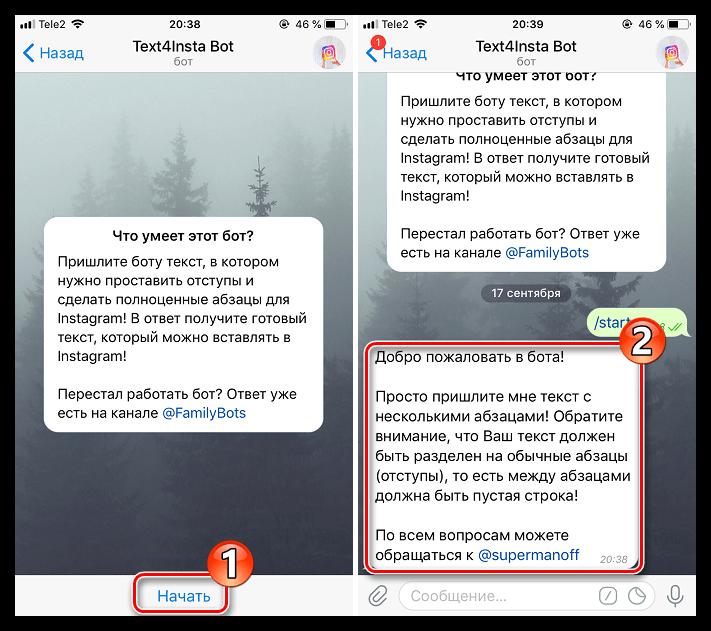 Начало работы с Telegram-ботом