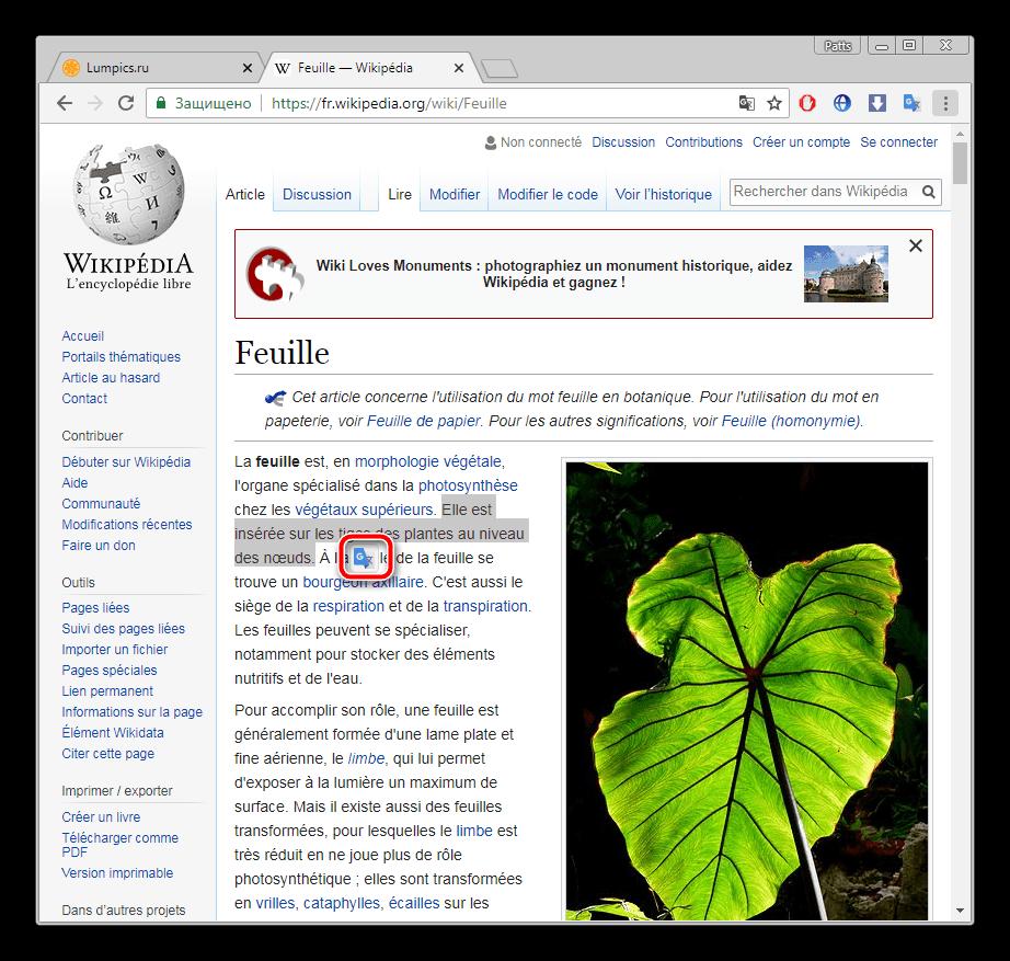 Выделить фрагмент текста в браузере Google Chrome