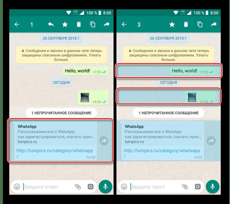 Выделить сообщение для удаления его из переписки в приложении WhatsApp для Android