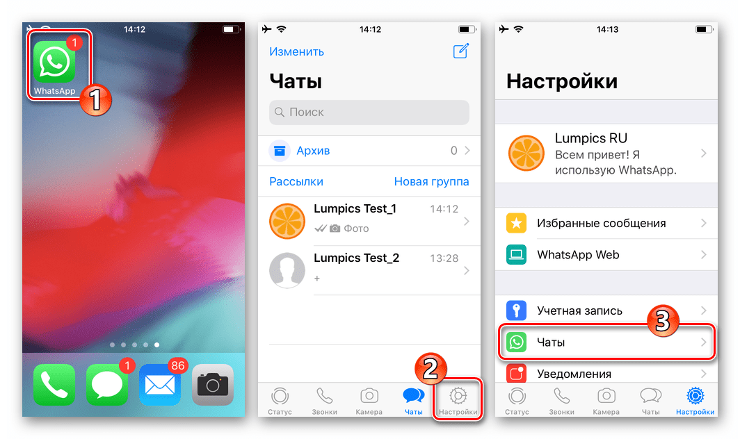 WhatsApp для iOS переход в настройки для удаления всей переписки в мессенджере