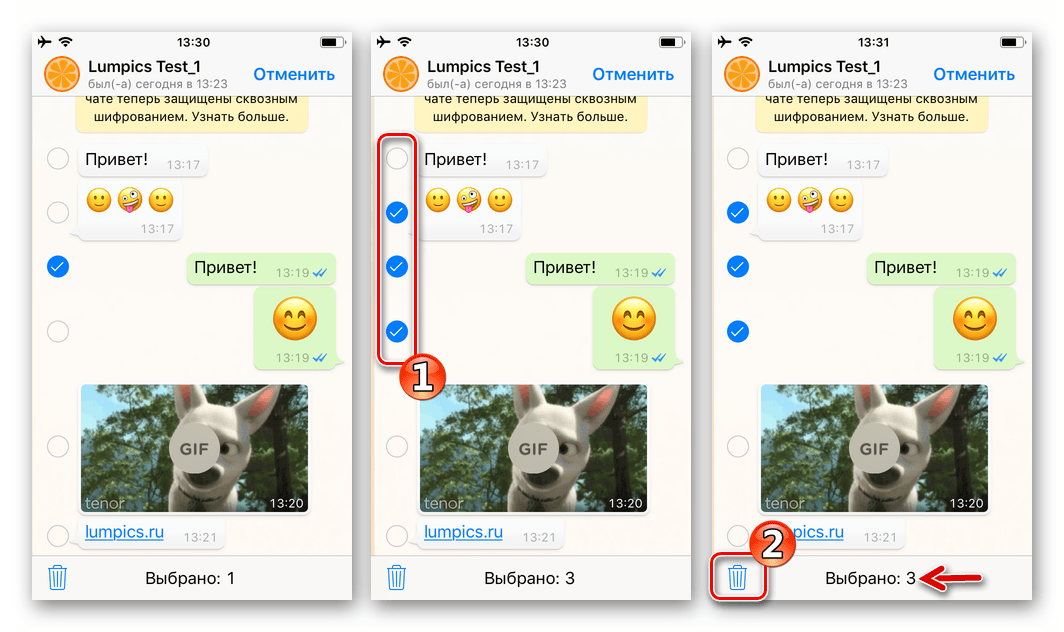 WhatsApp для iPhone Выбор и удаление нескольких сообщений