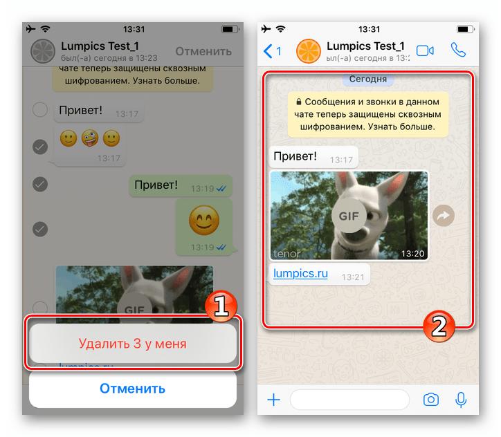 WhatsApp для iPhone подтверждение удаления сообщений - чат очищен