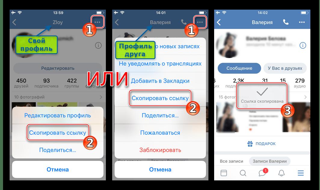 ВКонтакте для iPhone копирование ссылки на страницу в соцети - свою, друга, группы