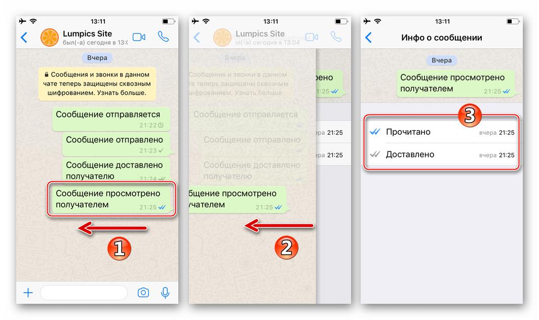 WhatsApp для iPhone смахнуть сообщение влево для получения подробной информации о нем