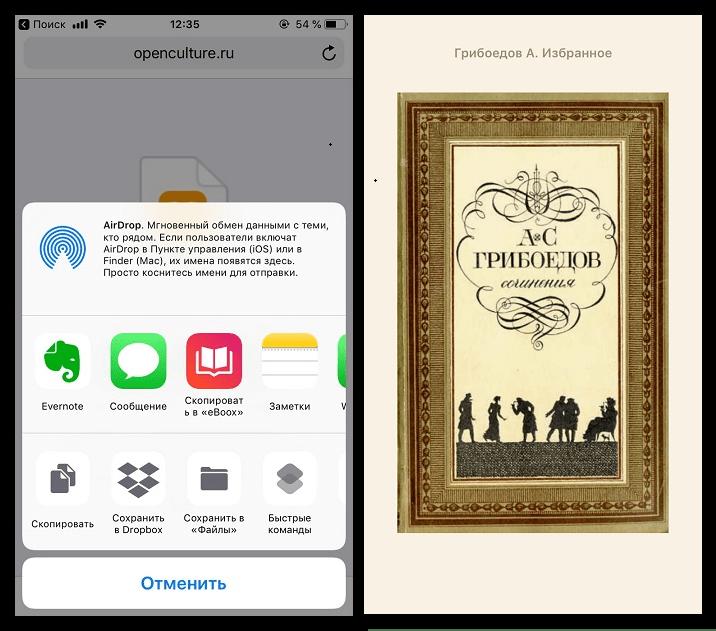 Загрузка книг на iPhone через браузер