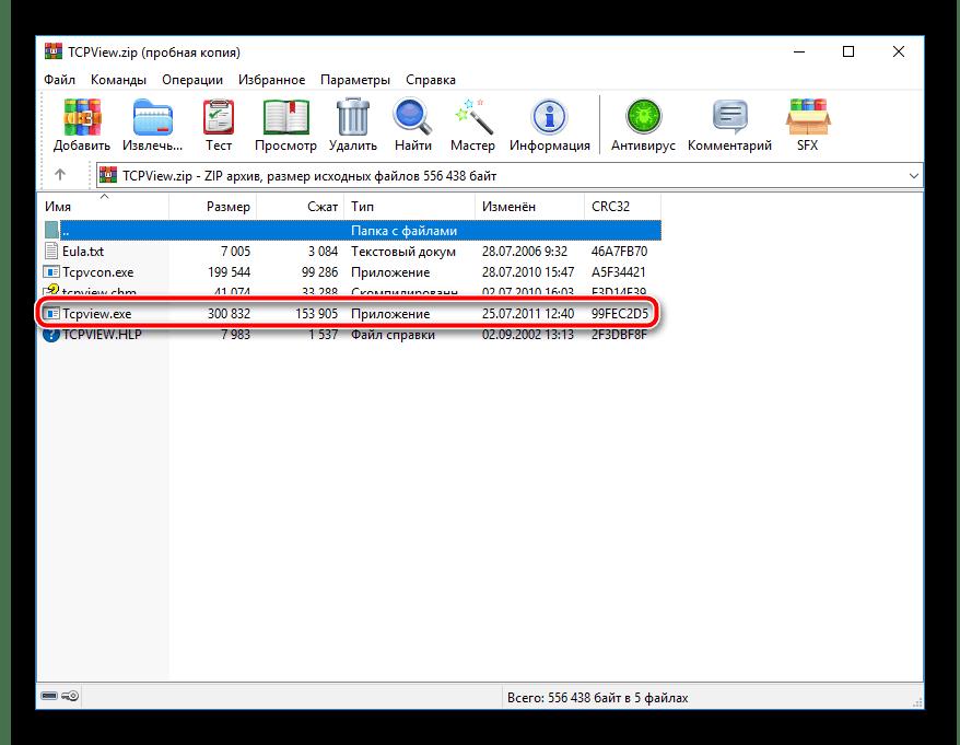 Запустить программу TCPView через архив