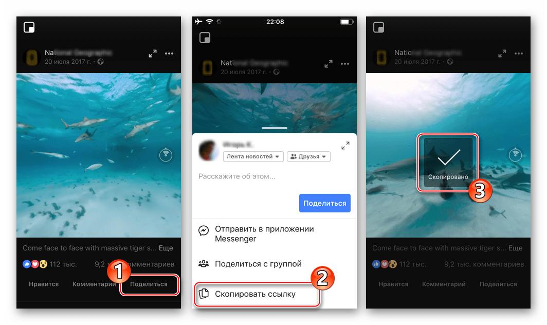 Facebook для iOS копирование ссылки на видео в соцсети для скачивания в iPhone