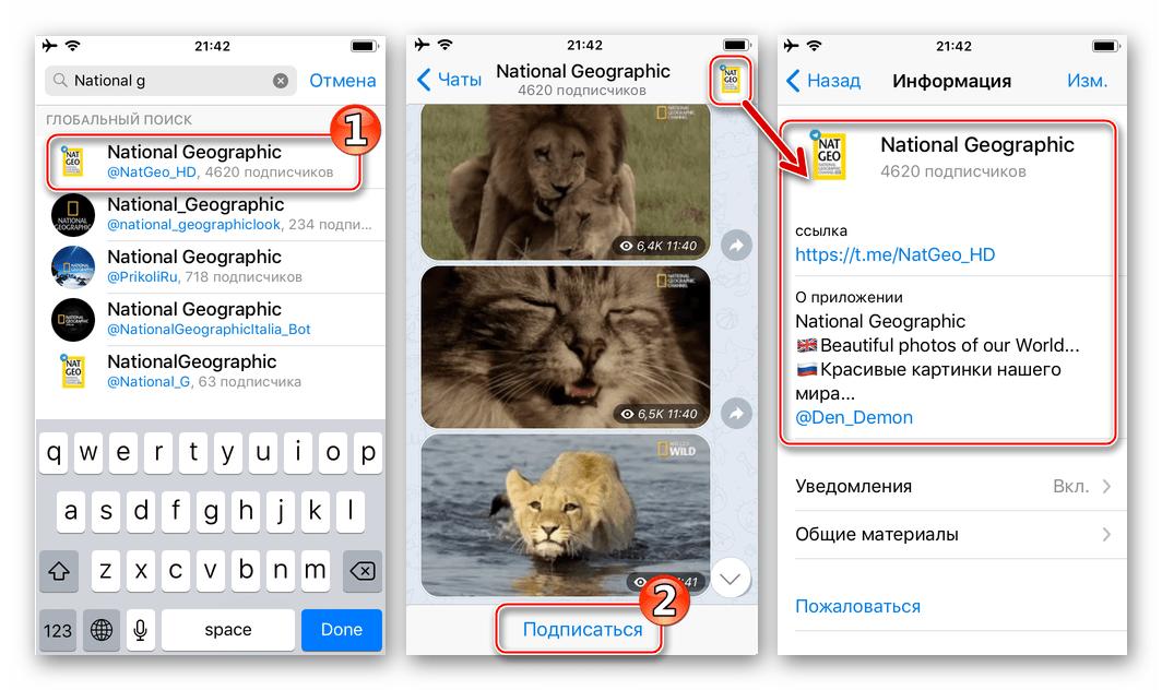 Telegram для iPhone подписка на канал, найденный через поиск в мессенджере