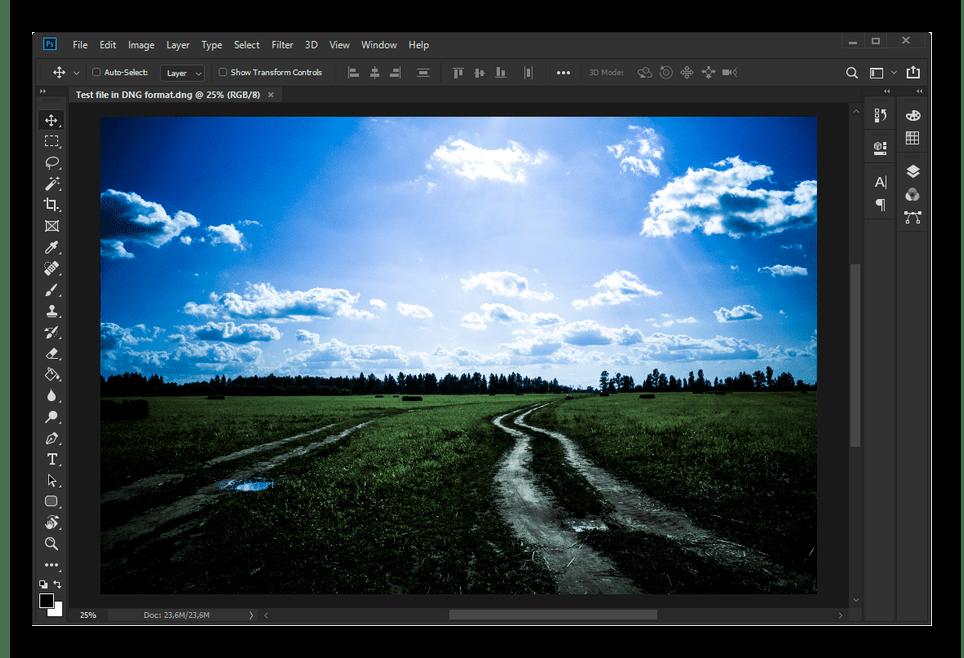 Успешный перенос файла DNG в Adobe Photoshop