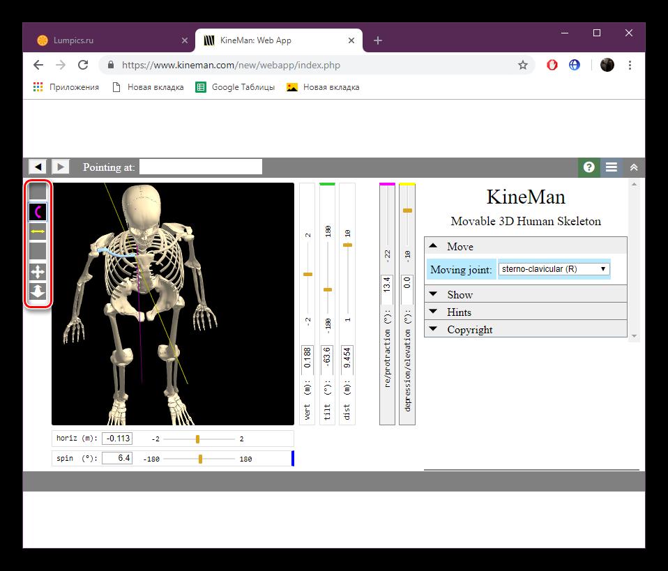 Элементы управления скелетом на сайте KineMan