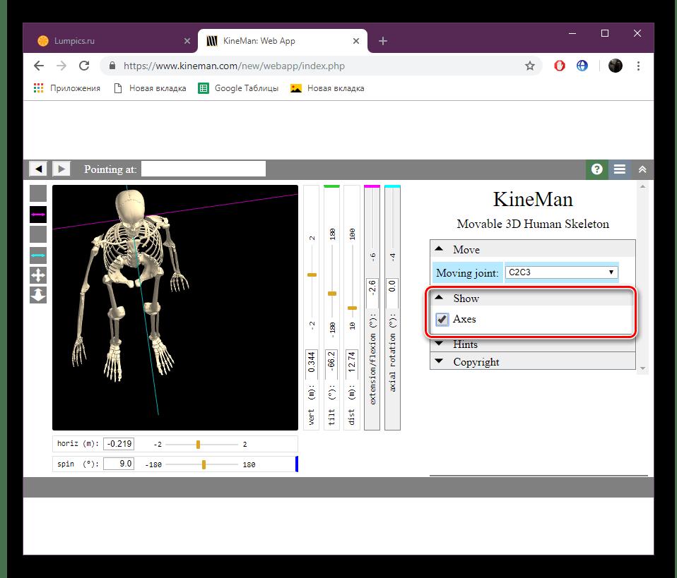 Отображение линий управления скелетом на сайте KineMan