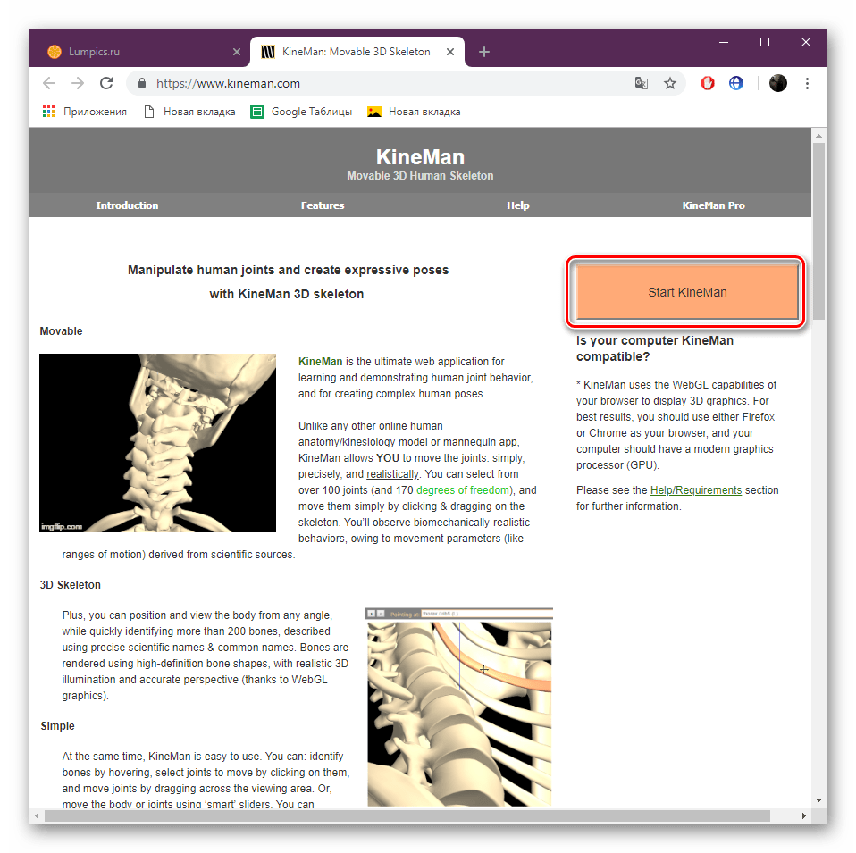 Перейти к просмотру скелета на сайте KineMan