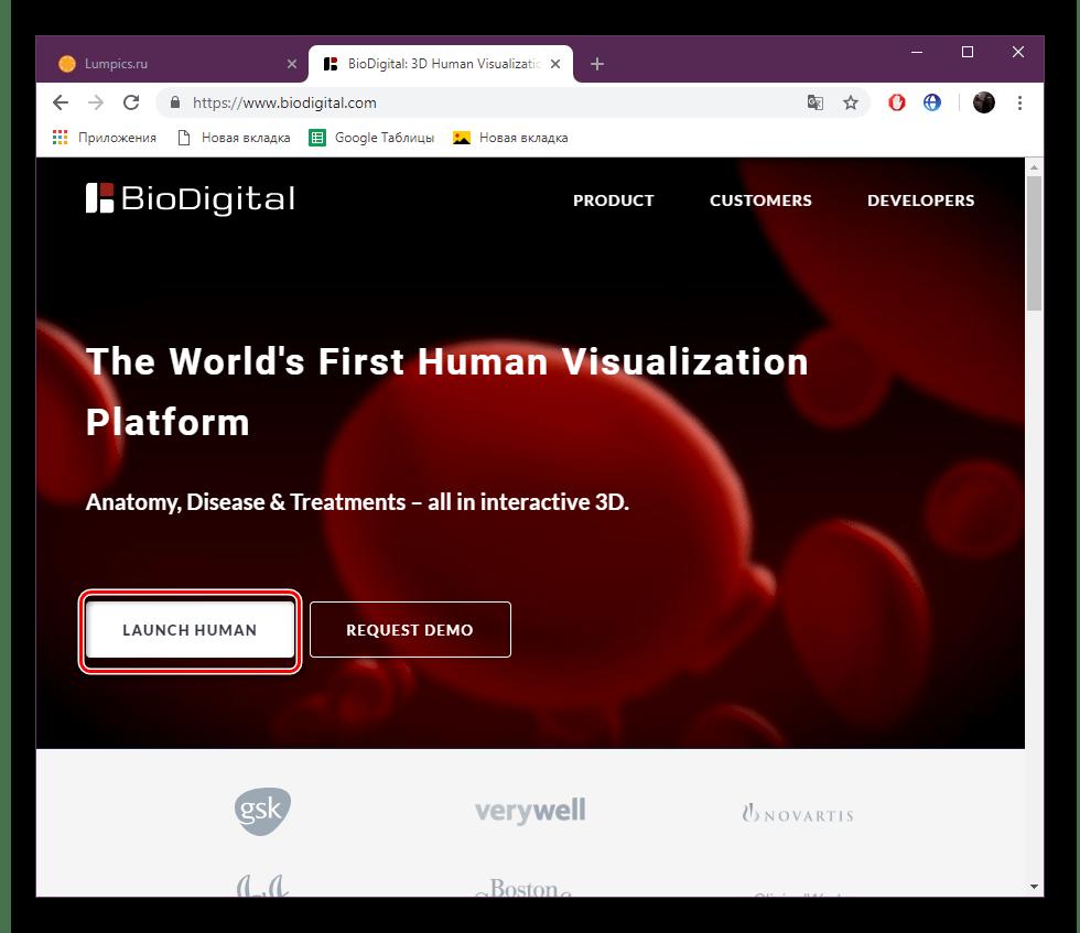 Перейти к редактору на сайте BioDigital