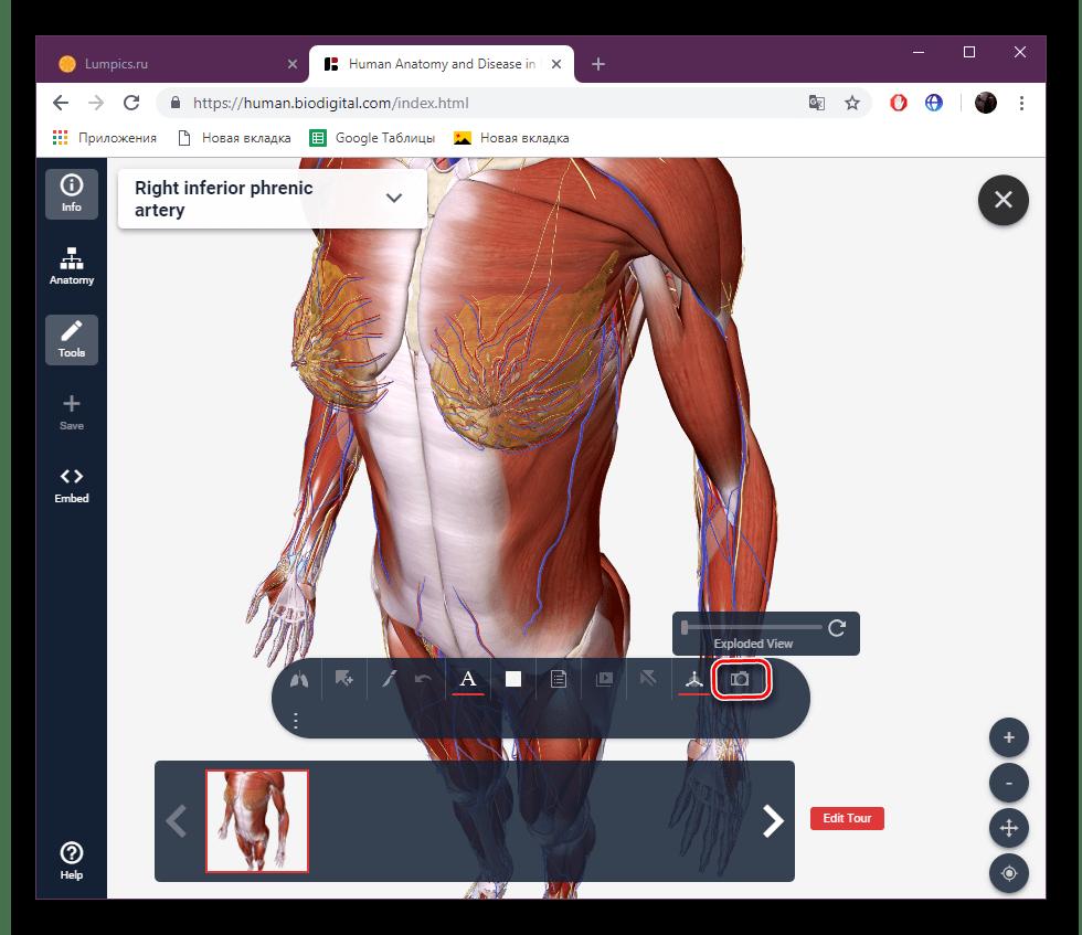 Перейти к созданию скриншота на сайте BioDigital
