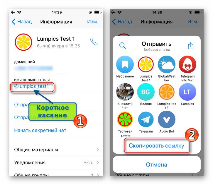Telegram для iOS - копирование ссылки на профиль в мессенджере из меню Отправить