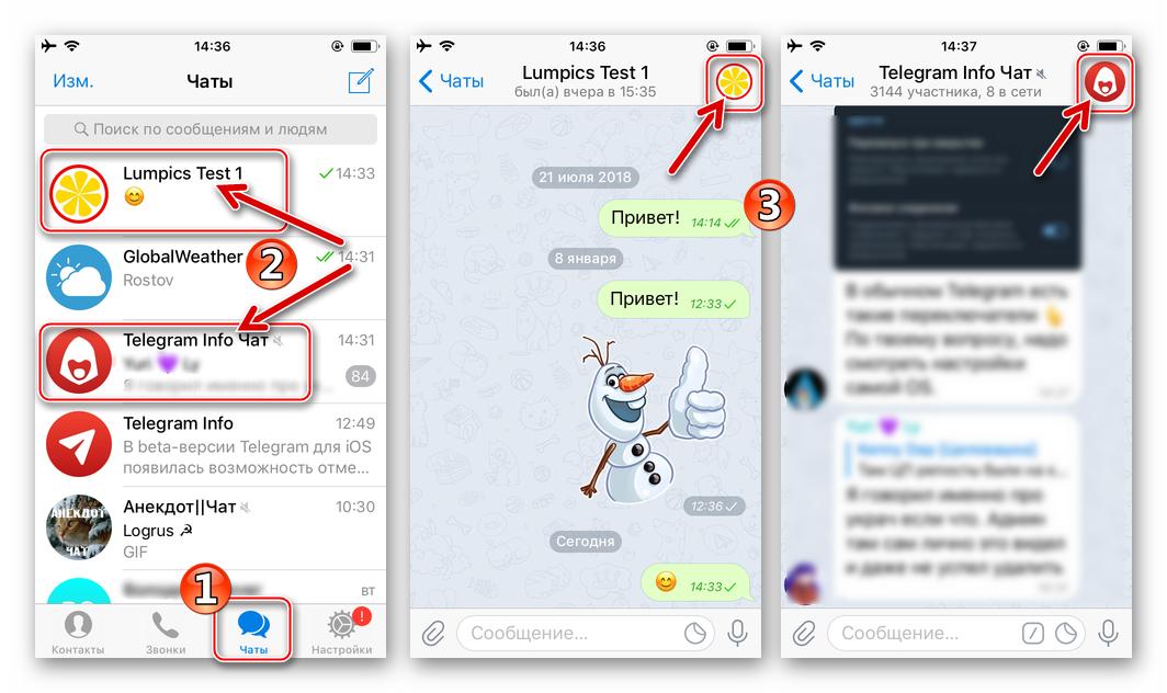 Telegram для iOS - переход к экрану Информация о пользователе, боте, группе, канале, публичном чате