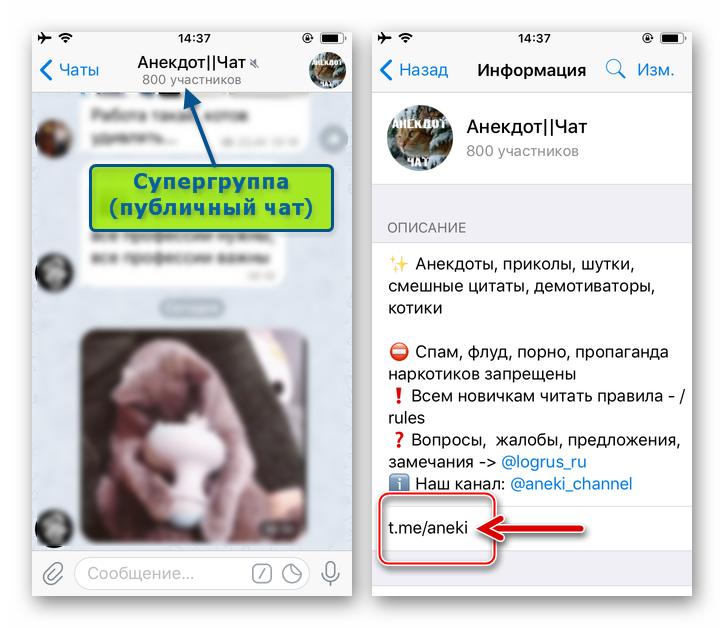 Telegram для iOS - ссылка на супергруппу (публичный чат) на экране Информация
