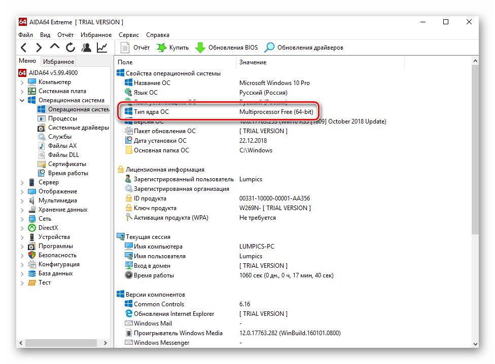 Указание разрядности системы в программе AIDA64 в Windows