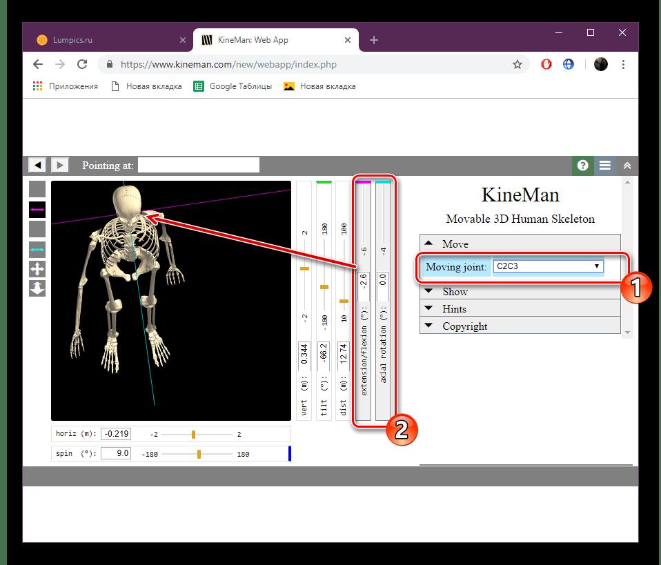 Включить отображение отдельными частями скелета на сайте KineMan